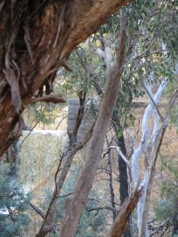 Cuneen's Gull water fall